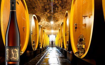 Top 10 | Pfalz | Sauvignon Blanc | Essensbegleiter