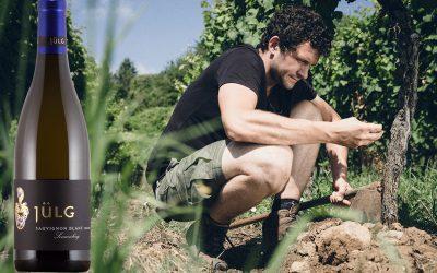 Top 10 | Pfalz | Sauvignon Blanc | Best Allrounder