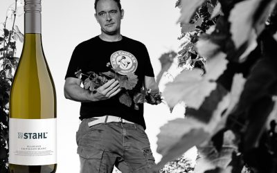 Top 10 | Franken | Sauvignon Blanc | Essensbegleiter