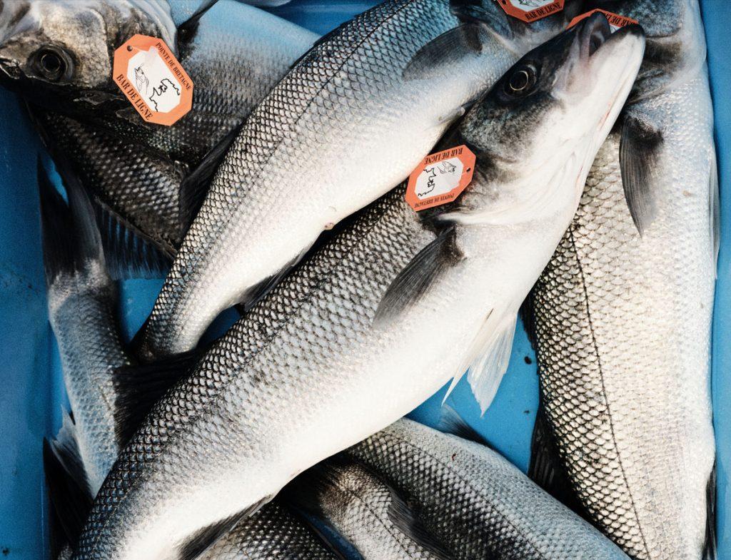 Loup de mer aus nachhaltigem Fischfang: Bar de ligne.