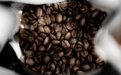 Kaffee – die Geheimnisse des Schwarzen Golds